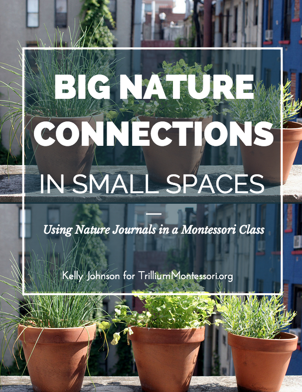 Big Nature COnnections In Small Spaces by Kelly Johnson