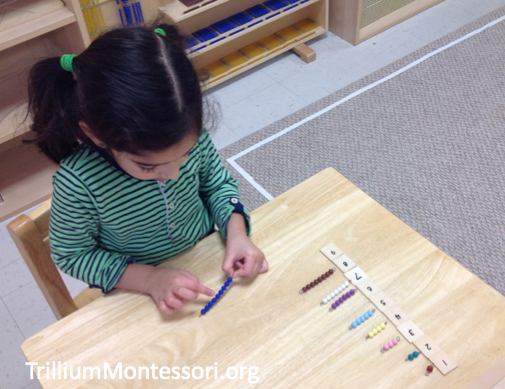 Montessori Bead Stair Counting