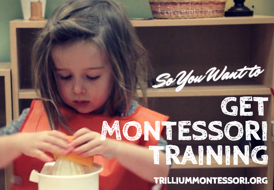 Post image for So You Want to Get Montessori Training