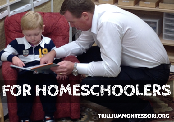Montessori training for homeschoolers