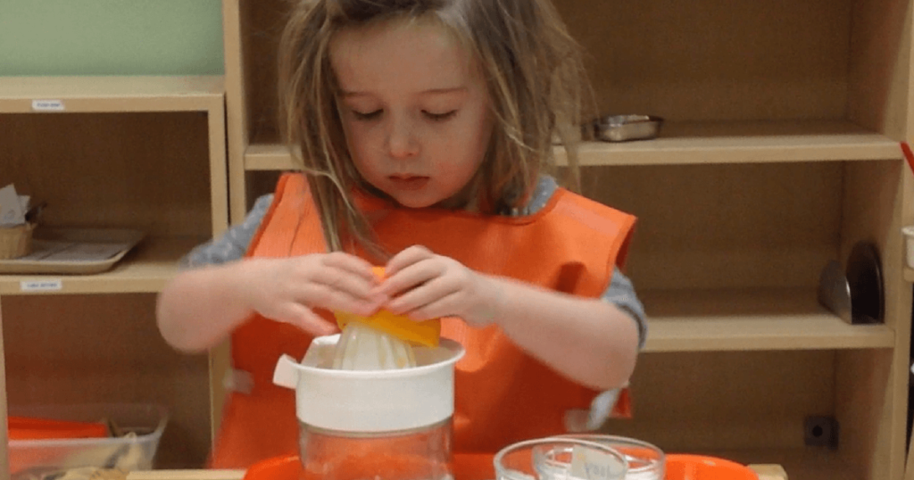 Resources for those interested in pursuing Montessori training