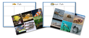Fish Not Fish Category Sorting Cards
