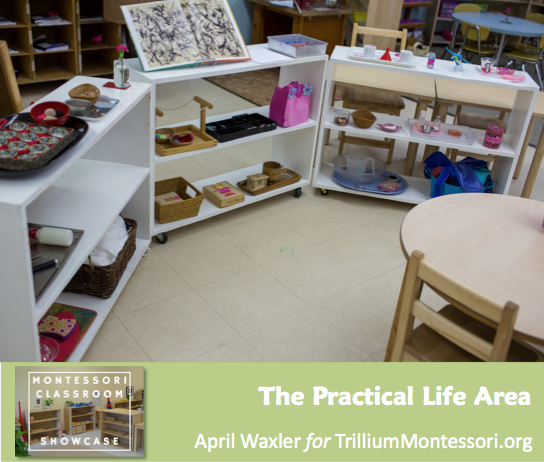 April Waxler Montessori Classroom Shelves Practical Life