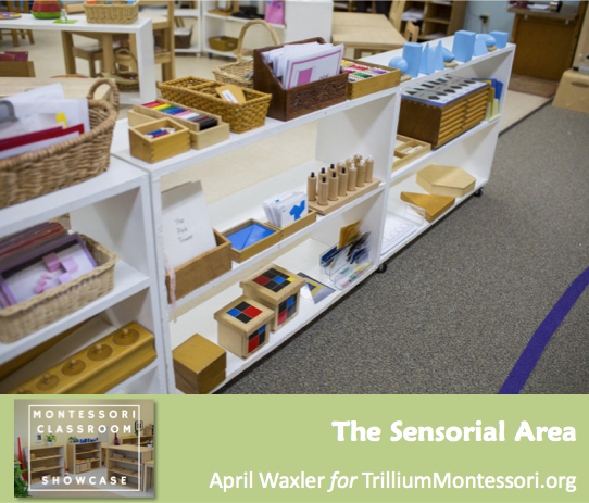 April Waxler Montessori Classroom Shelves Sensorial