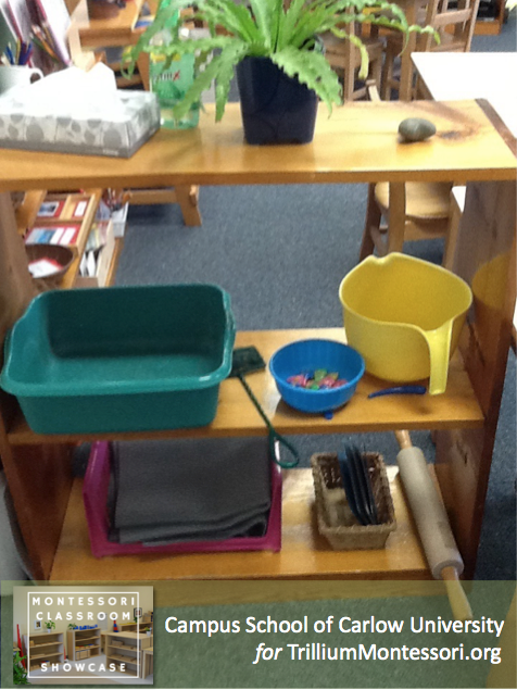 Campus School of Carlow Montessori classroom Movement shelf