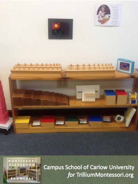 Campus School of Carlow Montessori classroom Sensorial shelves 1
