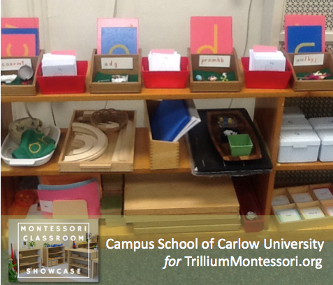 Campus School of Carlow Montessori classroom language shelves 2