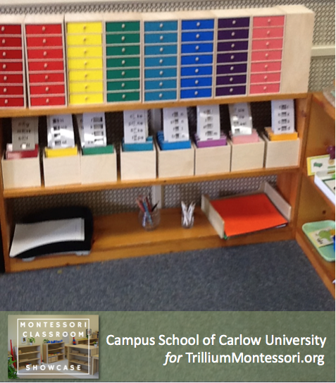 Campus School of Carlow Montessori classroom language shelves 4