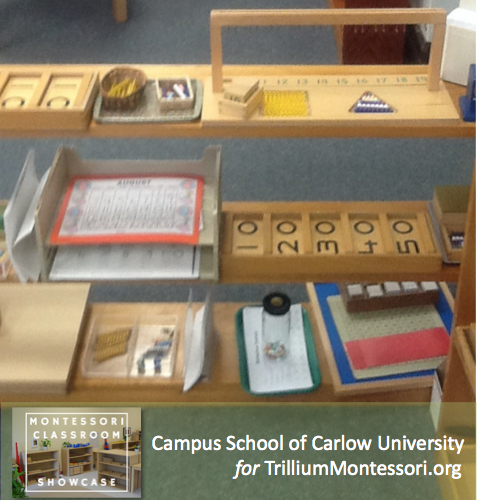 Campus School of Carlow Montessori classroom math shelves 2