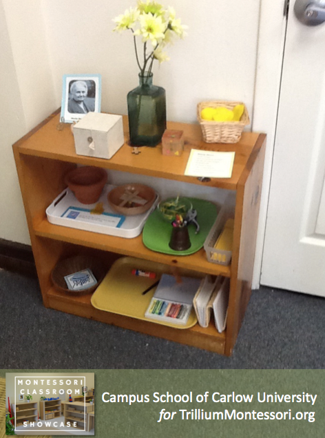 Campus School of Carlow Montessori classroom peace shelf