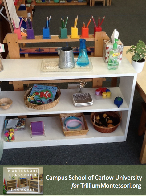 Campus School of Carlow Montessori classroom practical Life shelves 3