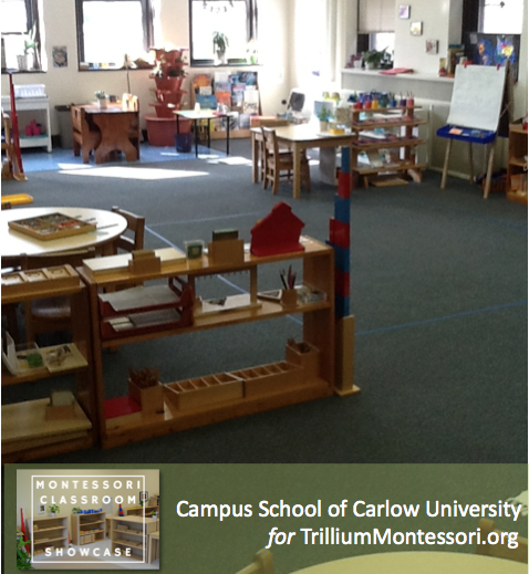 Campus School of Carlow Montessori classroom view from door