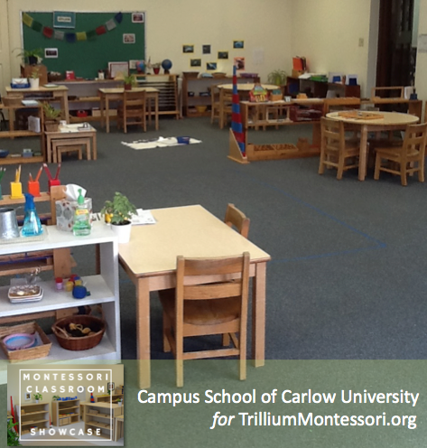Campus School of Carlow Montessori classroom view from rear of room