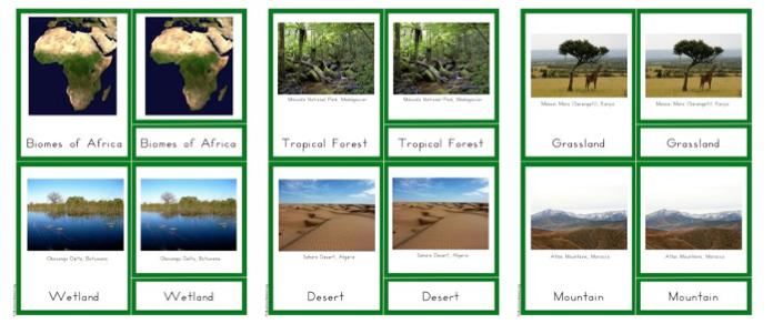 Continents A Z Biome 3 Part Cards
