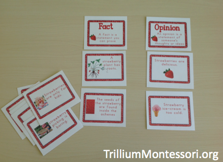 Strawberry Patch Fact or Opinion Cards