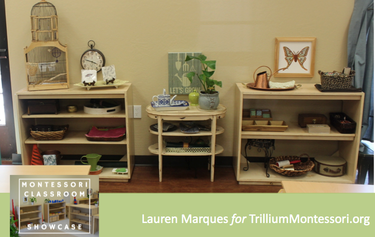 Lauren Marques Montessori Classroom Showcase 5