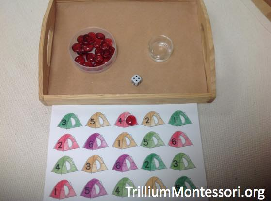 Preschool Camping Theme 6 Roll and Cover