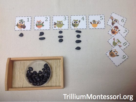 Preschool Camping Theme 7 Number Cards