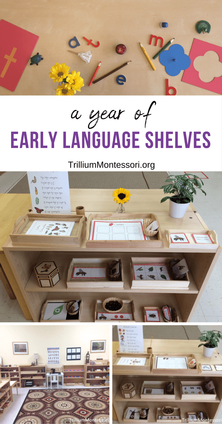 A year of early language Montessori shelves