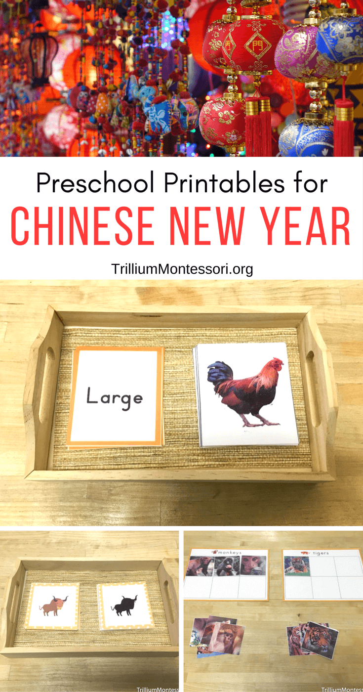 Preschool Activities and Printables for Chinese New Year