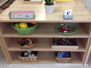 Object Matching Early Language Shelves from Trillium Montessori.