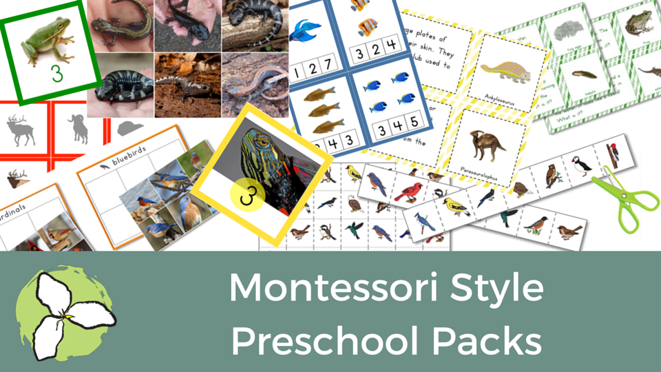 TpT Sale categories- preschool packs