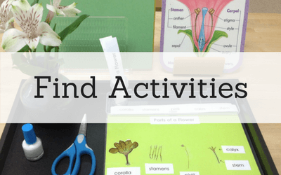 find-montessori-and-preschool-activities