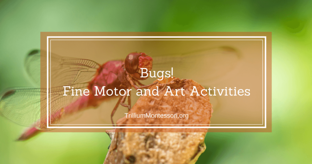 Bugs!  Fine Motor and Art Activities on the Shelf