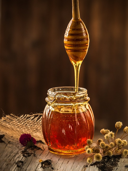 Honey tasting activity