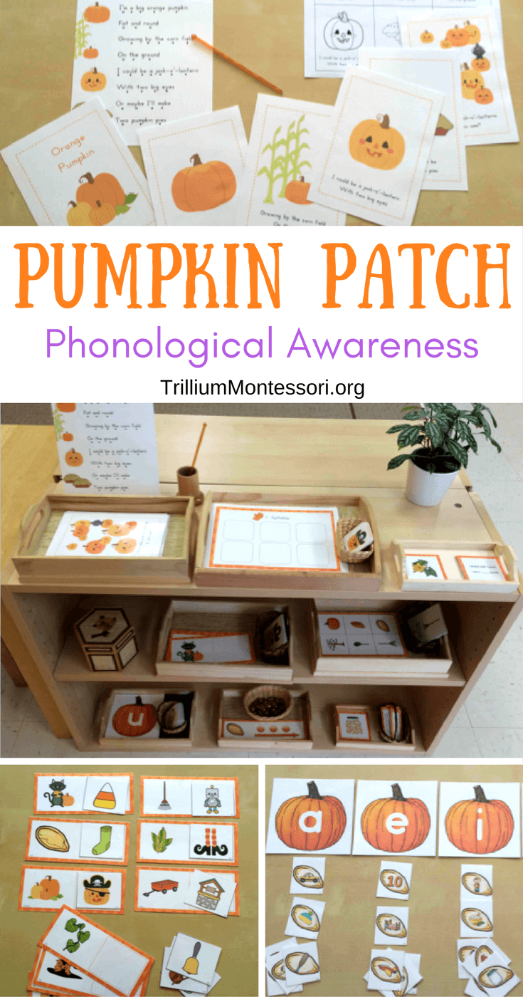 Pumpkin and fall theme phonological and phonemic awareness activities
