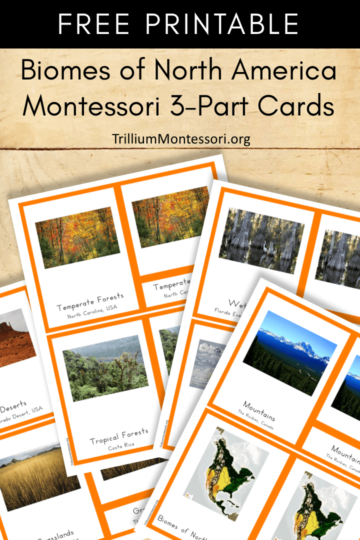 Free Printable Biomes of North America Montessori 3 part Cards