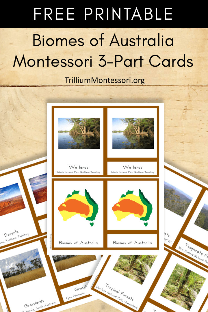 Free Printable biomes of Australia Montessori 3 part Cards