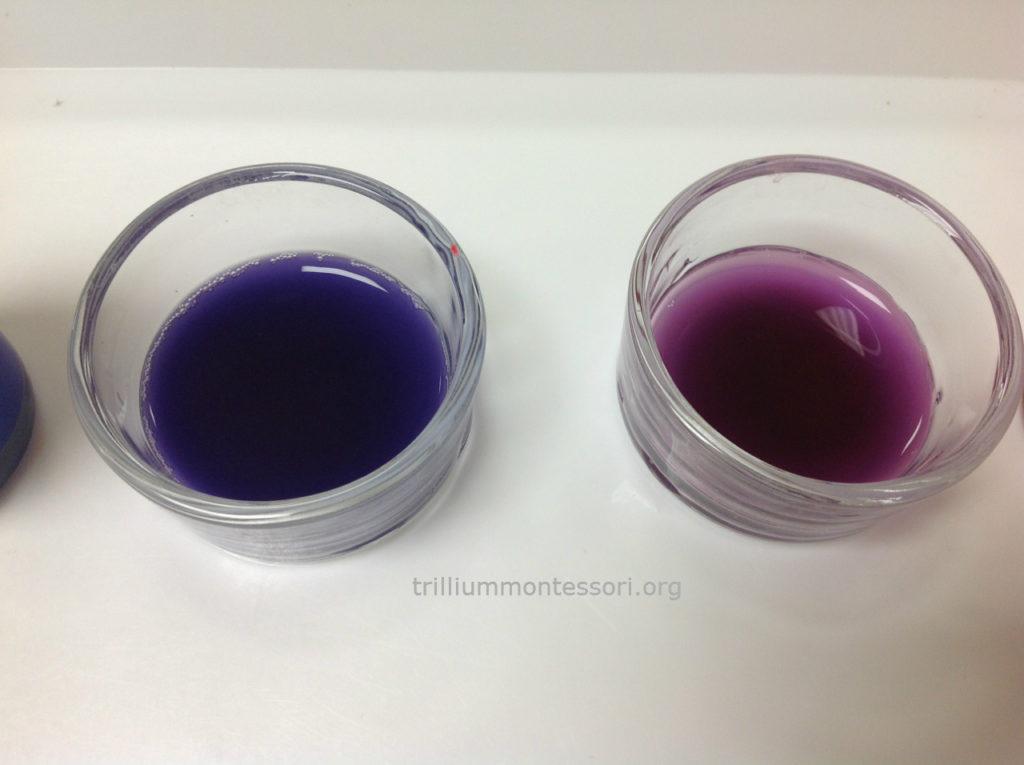 Indigo and Violet Color Mixing Trillium Montessori