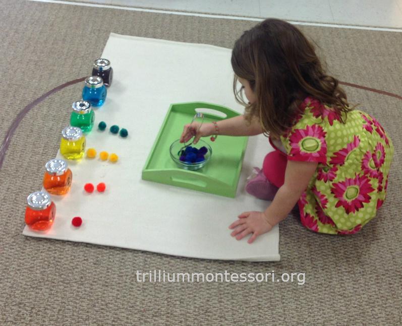 Rainbow Counting Trillium Montessori