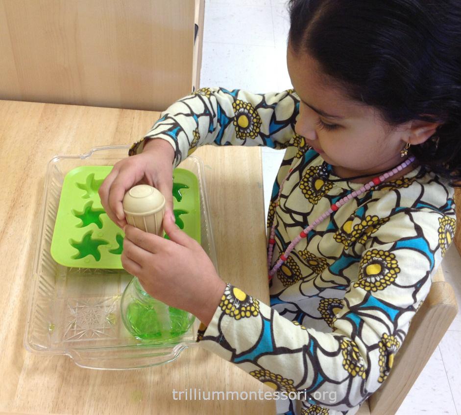 baster transfer- Trillium Montessori