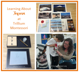 Learning About Japan at Trillium Montessori