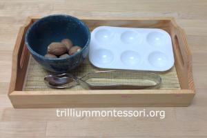Tonging Whole Nutmeg at Trillium Montessori