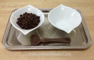 Spooning coffee beans at Trillium Montessori