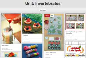 Trillium Montessori's Invertebrates Unit Pinterest Board