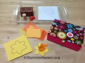 Pin punching a daffodil- Trillium Montessori