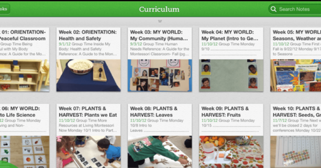 Curriculum planning for Montessori teachers
