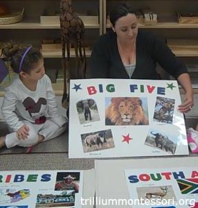 South Africa- the Big Five Animals - Trillium Montessori