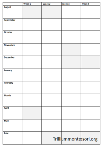 Trillium Curriculum Planning Grid- Blank