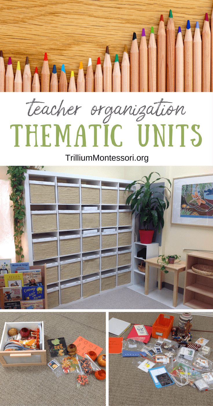 Organizing classroom storage for thematic units