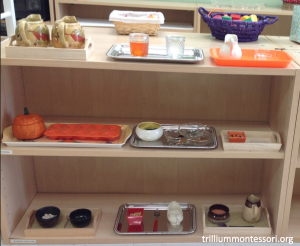 October Theme Fine Motor Montessori Shelf