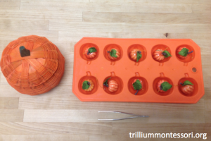 Tweezers and Pumpkins Montessori Fine Motor