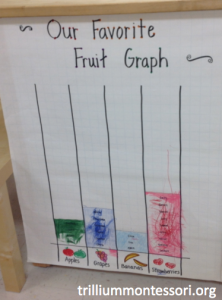 Our Favorite Fruits Graph