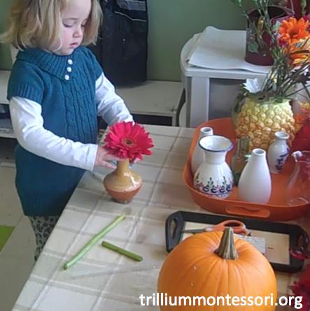 Preschool Thanksgiving Feast- Arranging Flowers
