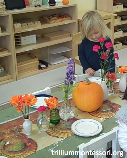 Preschool Thanksgiving Feast- Setting the Table