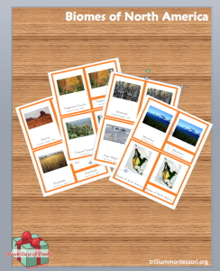 Biomes of North America Cards